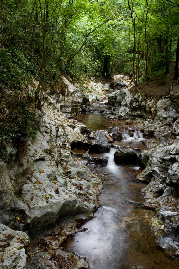 4. Ríos y umbrías en el valle de Baztán. Autor, F0ff0