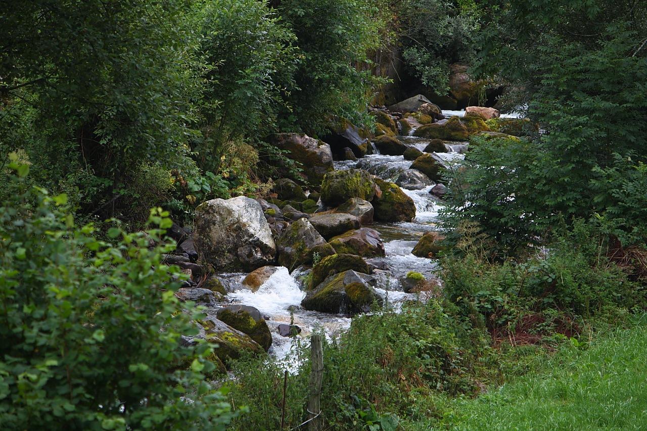 11. El río Pigüeña, uno de los cuatro existentes en el Parque. Autor, Niño Pera