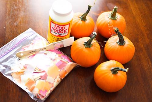 Patchwork Pumpkins-1.jpg