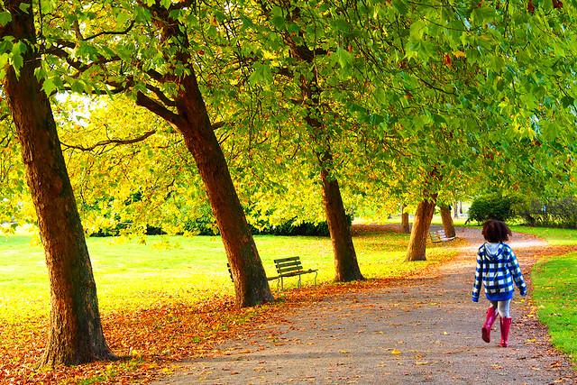 Walking in an Autumn Wonderland