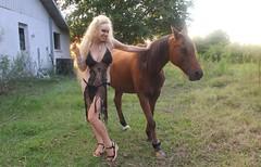 Moon Goddess & The Horse