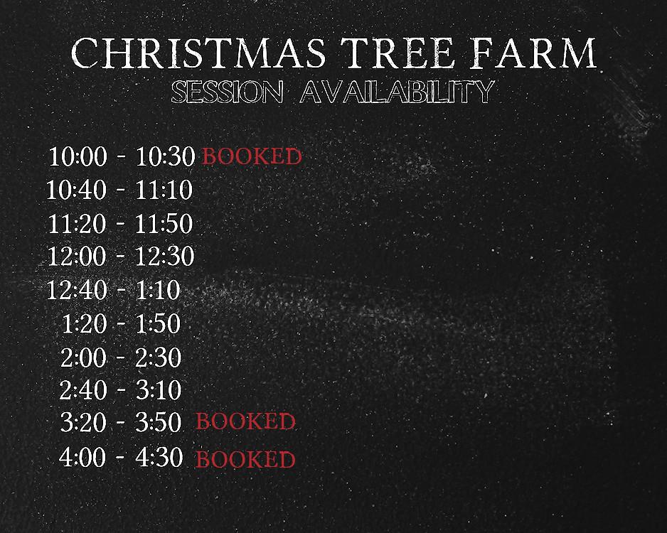THE CHRISTMAS TREE FARM SESSION AVAILABILITY 3 web