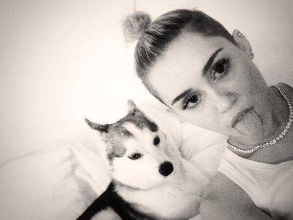 Miley Cyrus_selfie