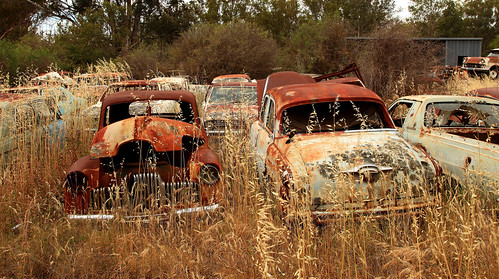 Peak Hill Car Graveyard 1