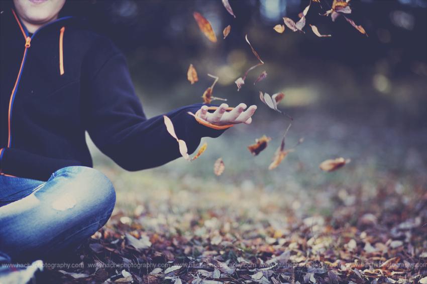 LP Fin otoño jarosa f