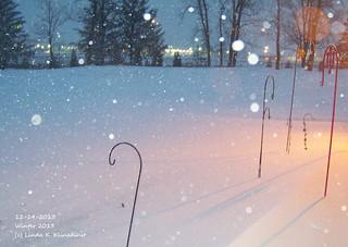 100_9007 - Winter 2013 - 12-14-2013