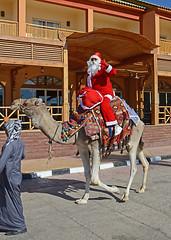 Sharm El Sheikh, Egypt - Xmas 2013