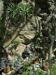 Desert Conservatory