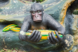 """""""It's dangerous to go alone, take this"""", said the Gorilla as it emerged from the rock"""
