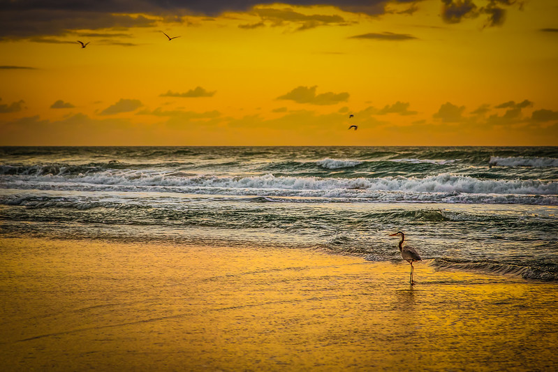 Early Morning at Cocoa Beach