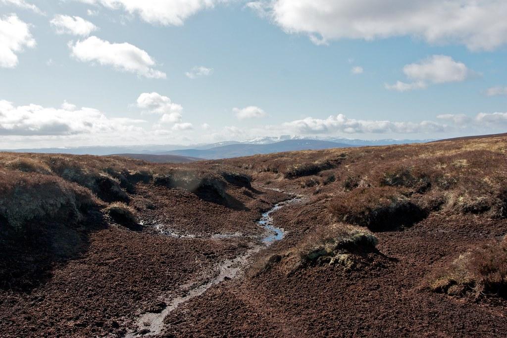 Lochnagar across the peatbog