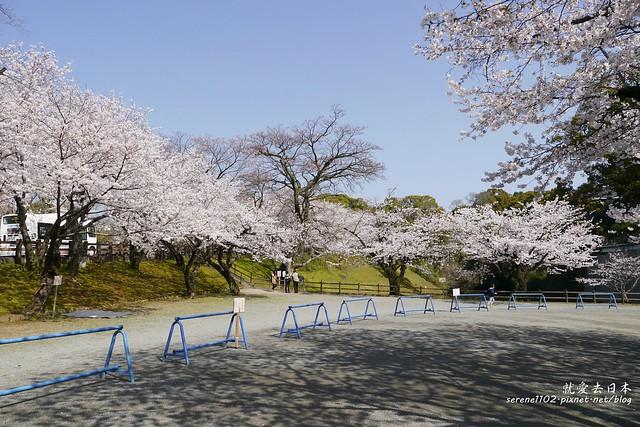 20140327山陽D2熊本-1120787