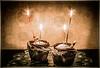 ruth-ellenFlanagan_candlelight_4065