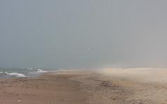 Море. Ветер. Туман