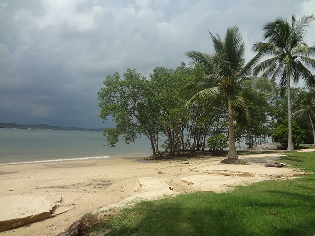Beach coastline along Pasir Ris Park