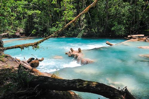 Cascadas de Agua Azul (50)