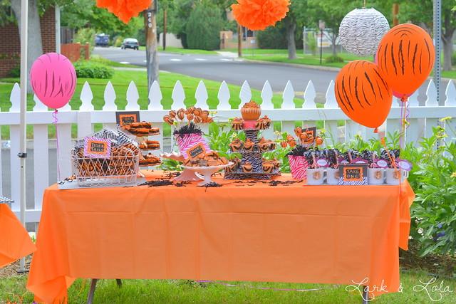 DSC_0657 & A Tiger Birthday Party! - Lark \u0026 Lola
