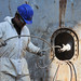 """Small photo of Worker on the """"Ameglia Star"""""""