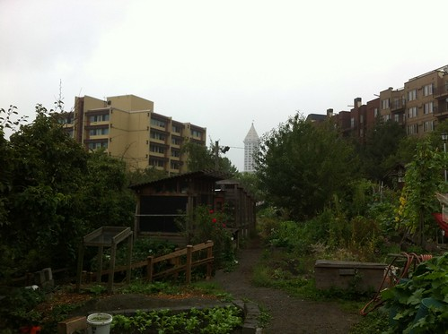 Danny Woo Community Garden: View of Smith Tower