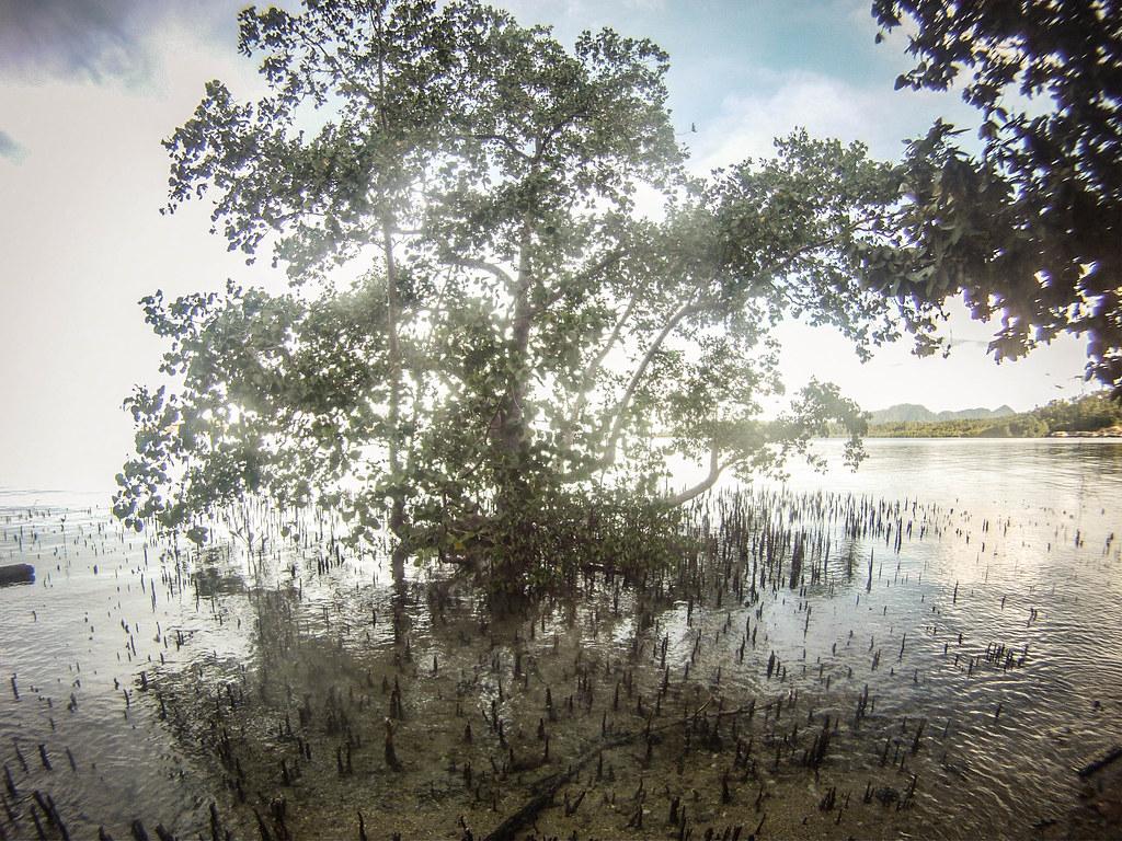 Fadhila; Tomken Island; Togeany