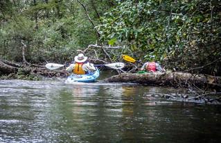 South Edisto River-095