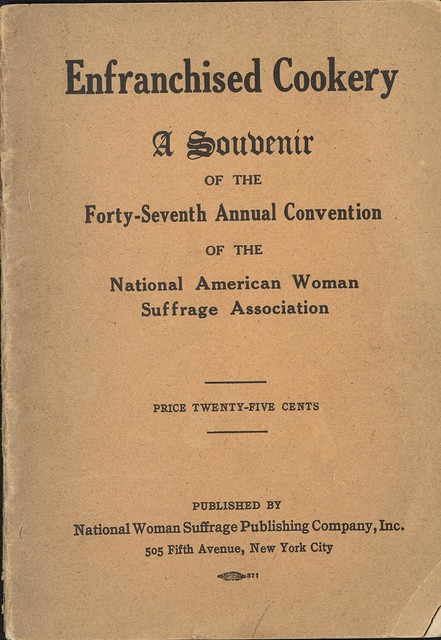 national american woman suffrage association essay