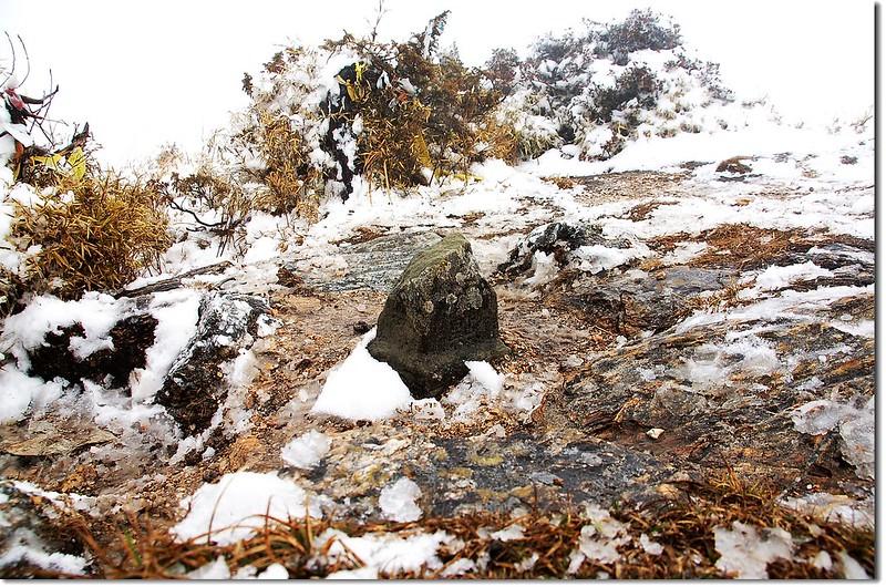 丹大山森林三角點(Elev. 3340 m) 1