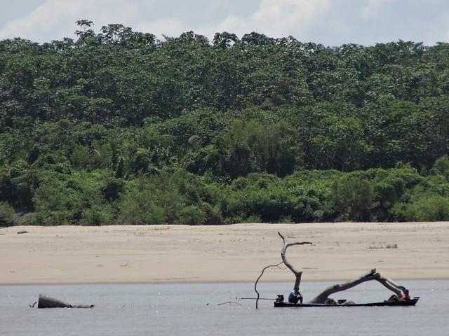 Praia no Amazonas Brasil