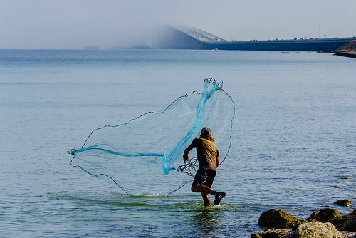 Fisherman casting a net in #TampaBay at Sunshine Skyway Bridge during marine layer