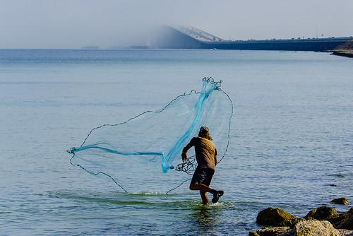 Fisherman casting a net in #TampaBay at Sunshine Skyway Bridge during marine layer