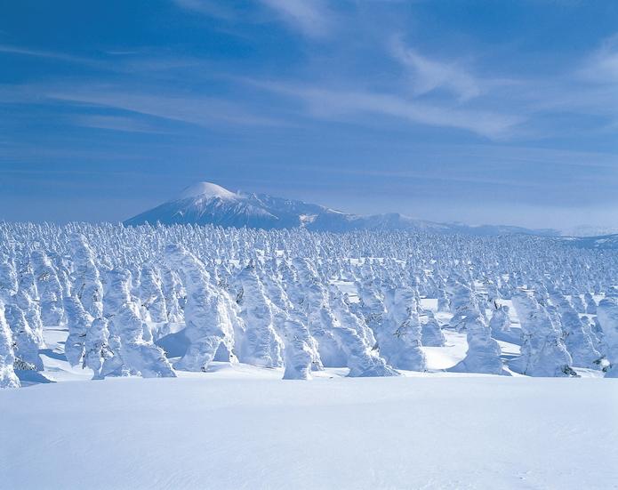 八幡平的樹冰