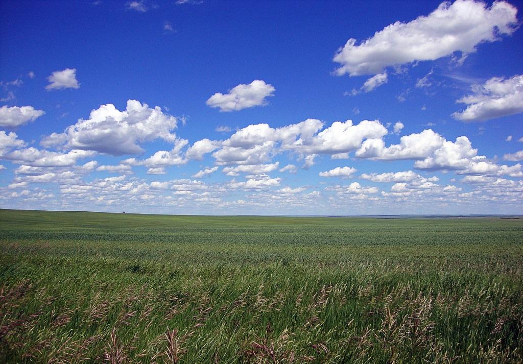 7. Praderas infinitas, al este de Montana. Autor, Fladager Photography