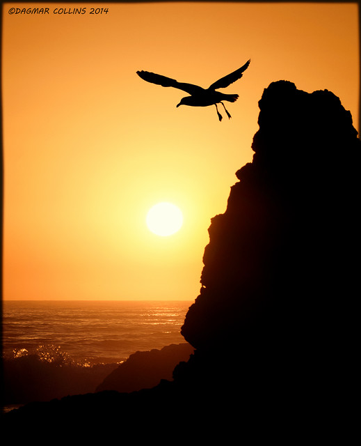 North Coast Sunset