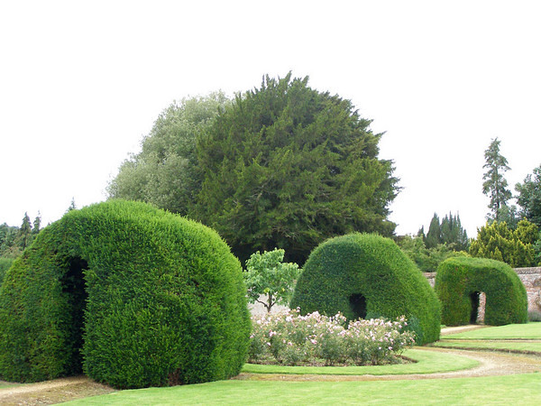 highclere_castle_hedges_600x