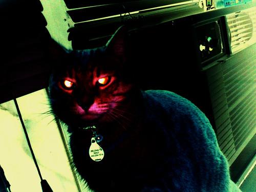 Evil Amby (2)(Dec 19 2013)