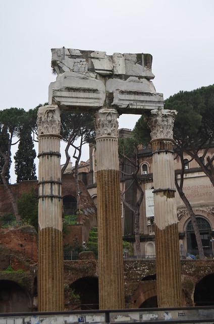 Roma 1 febbraio 2014 020