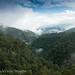 Parque Nacional Sierra de Tatamá, Western Cordillera, Chocó/ Risaralda