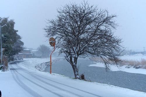 古利根の流れのほとり冬景色 by nomachishinri