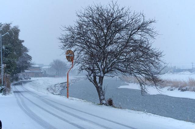 古利根の流れのほとり冬景色