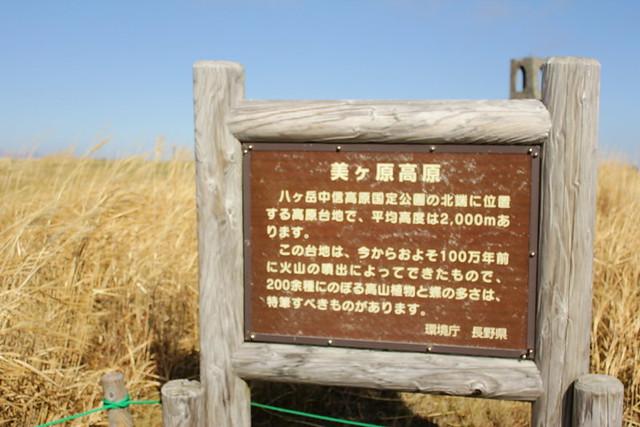 20131102_美ヶ原_0045
