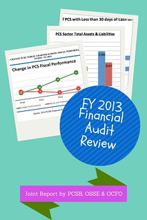 Financial Audit Review