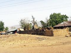 Gombe Desert Village