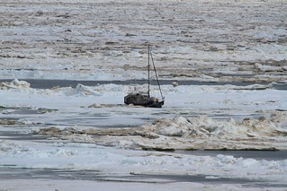 The crew of the Coast Guard Cutter Healy, a polar icebreaker, on a National Science Foundation-funded research mission rescued a man aboard a 36-foot sailboat trapped in Arctic ice approximately 40 miles northeast of Barrow, Alaska, July 12, 2014.  Coast Guard 17th District watchstanders in Juneau were contacted by North Slope Borough Search and Rescue that a man, sailing his sailboat from Vancouver, Canada, to eastern Canada via the Northwest Passage, needed assistance after his vessel had become trapped in the ice. (U.S. Coast Guard photo courtesy of Coast Guard Cutter Healy)