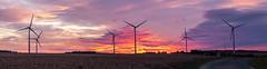 levé de soleil sur éoliennes-8 - Photo of Saint-Loup