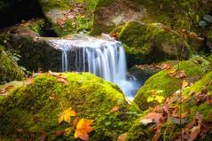 Gaishöllwasserfälle Herbst