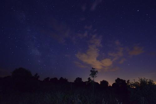 La Vía Láctea en el Pinar