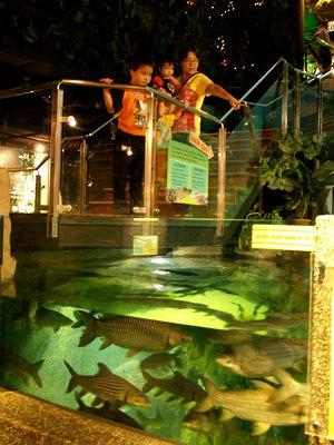20130412_kl3_aquaria