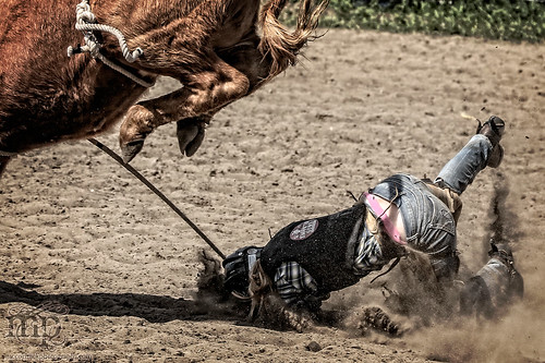 Gooseberry Lake : 4-H Rodeo 2013 : All Kinds of Ouch