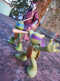 Nickelodeon  TEENAGE MUTANT NINJA TURTLES :: NINJAS in TRAINING, LEONARDO & DONATELLO xvii // .. training with Splinter (( 2013 ))