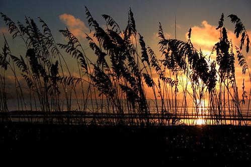 ocean blue sun beach clouds sunrise canon dusk photographers unite capecanaveral vigilant cocoabeach 60d jwphotos mygearandme vigilantphotographersunite welshjj smilinghorsephotography